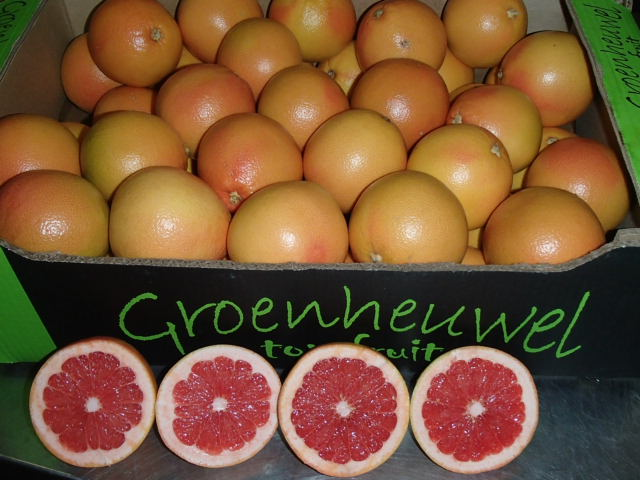 Bio Grapefruit Star Ruby
